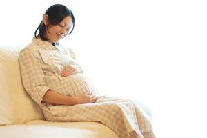 妊婦歯科健診も実施