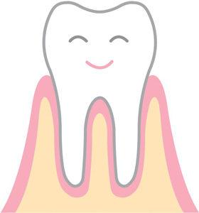 歯周病でない健康な歯ぐき